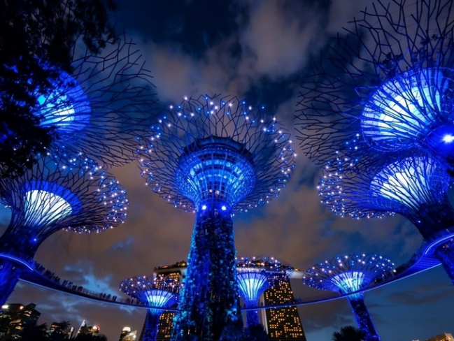 Khu vườn Gardens by the Bay được khen lộng lẫy, thu hút khi tỏa ánh sáng xanh.