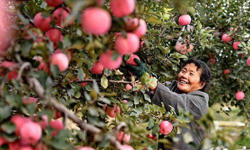 ngoi-lang-o-trung-quoc-to-chuc-su-kien-giong-apple-de-ban-tao-2